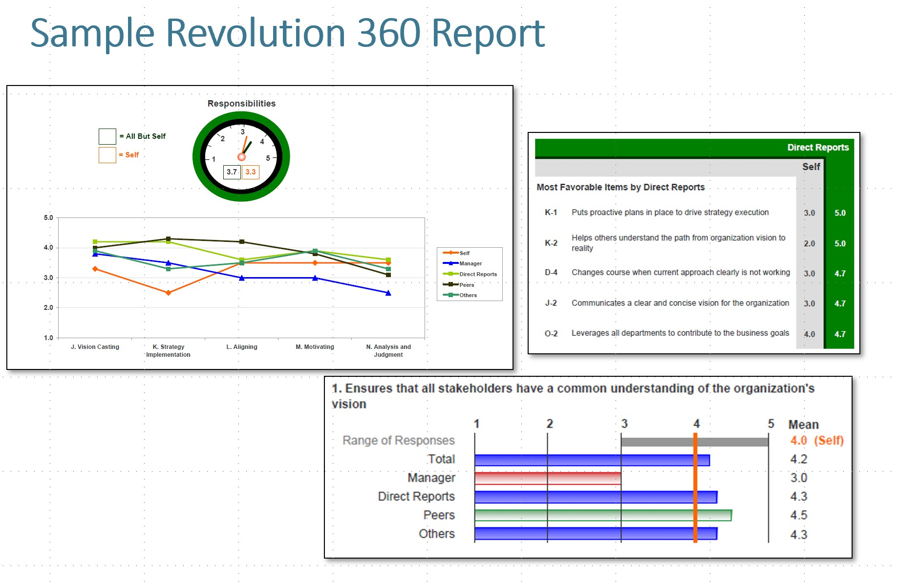 Revolution 360 Feedback Report