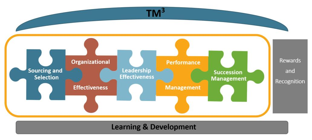 Talent Management Maturity