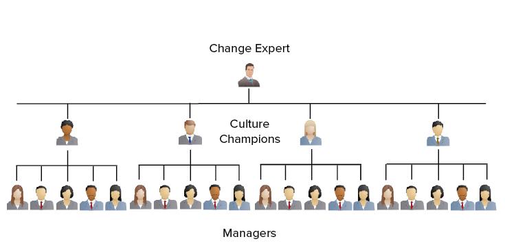 Culture Champions